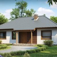 Одноэтажные дома Z69-dk